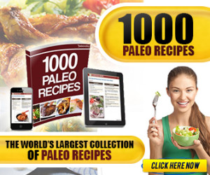 paleorecipewidgetimage